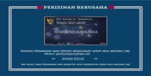 Jasa Pengurusan Nomor induk berusaha (NIB) Ayudia Solusi